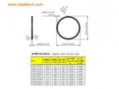 oval piston ring